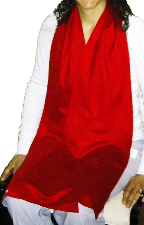 Cravaat II Red long dining scarf adult bib