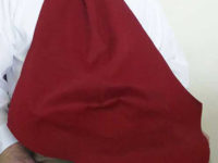 Adult Bib Napkin at Your Neck Burgundy